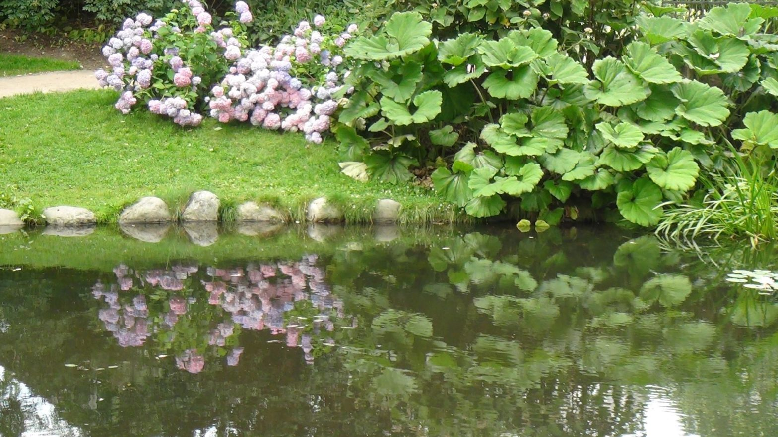 jardí botànic - adn-dna.net